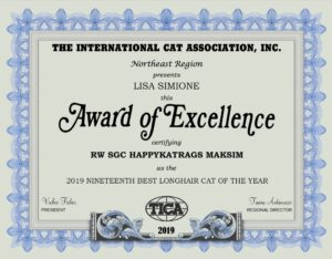 2019 TICA 19th Best Longhair
